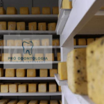 Estudo traça o perfil do queijo colonial gaúcho