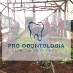 Alunos criam cooperativa dentro da escola para produzir alimentos orgânicos